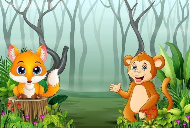 Vista delle piante della foresta nella nebbia con una volpe e una scimmia