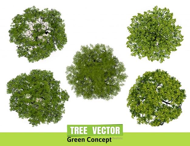 Vista superiore degli alberi per l'illustrazione di vettore del paesaggio.