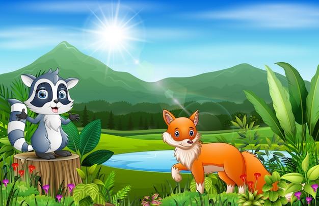 Viste del paesaggio delle montagne con animali selvatici