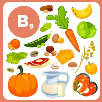 Vitamina b12, fonti di acido folico.