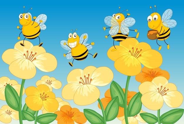 Volare le api da miele