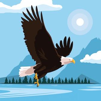 Volo dell'uccello dell'aquila calva con il paesaggio