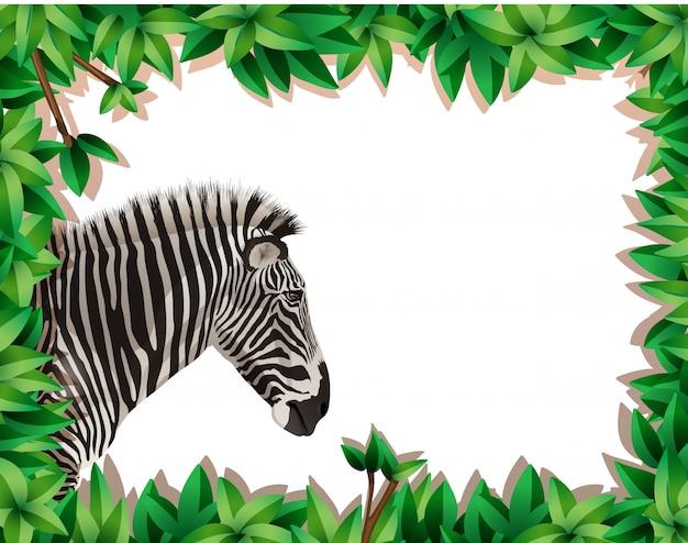 Zebra in cornice naturale