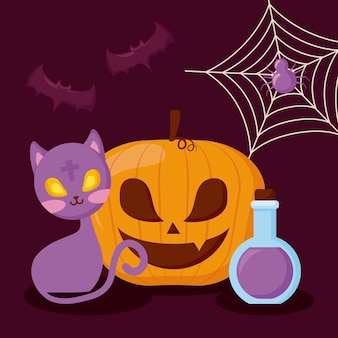 Zucca con il concetto di gatto e halloween