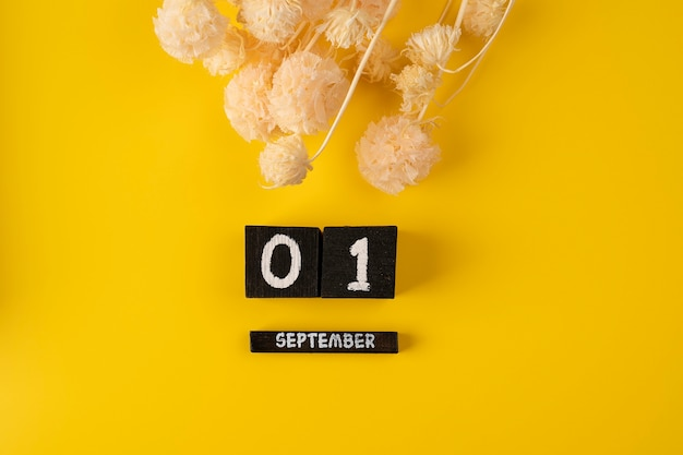 1 september houten kalenderkubus op gele achtergrond voor datumachtergrond terug naar school plat leggen