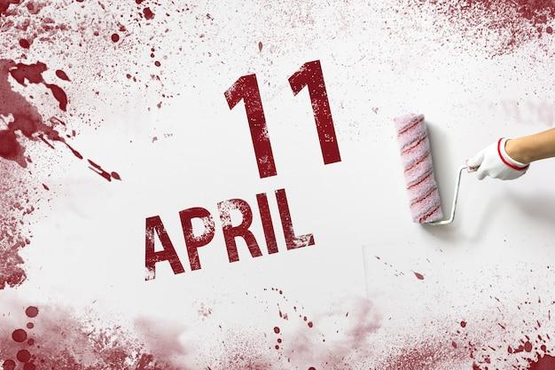 11 april. dag 11 van de maand, kalenderdatum. de hand houdt een roller met rode verf vast en schrijft een kalenderdatum op een witte achtergrond. lente maand, dag van het jaar concept.