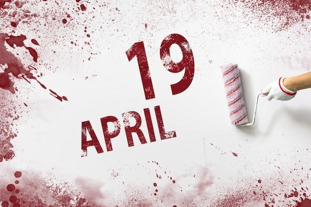 19 april. dag 19 van de maand, kalenderdatum. de hand houdt een roller met rode verf vast en schrijft een kalenderdatum op een witte achtergrond. lente maand, dag van het jaar concept.