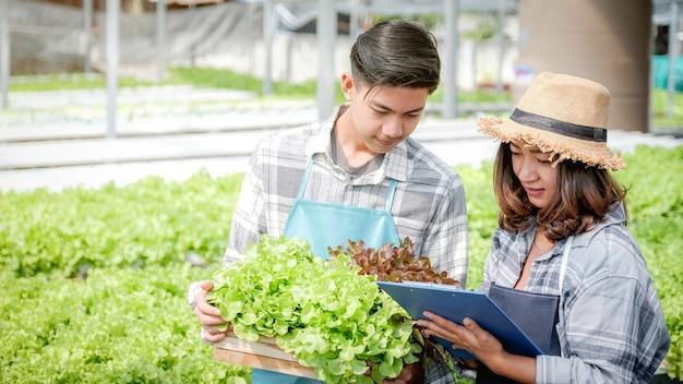 2 boer inspecteert de kwaliteit van plantaardige biologische salade en sla van hydrocultuurboerderij en maakt aantekeningen op klembord om klanten het beste product te geven.