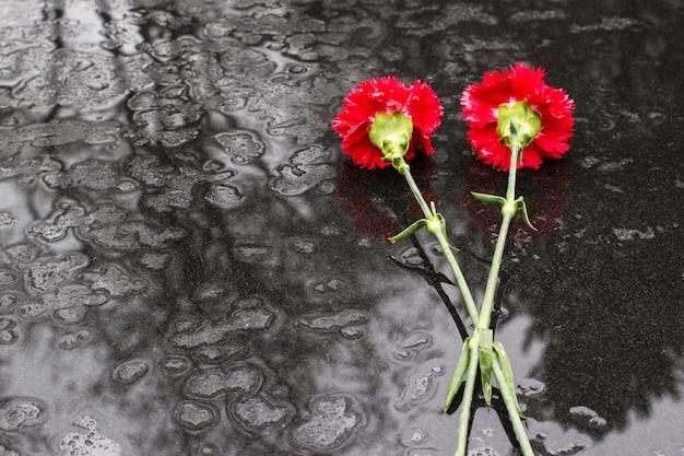 2 rode chrysanten op zwarte stenen ondergrond in de regen viering van de verjaardag van de overwinning
