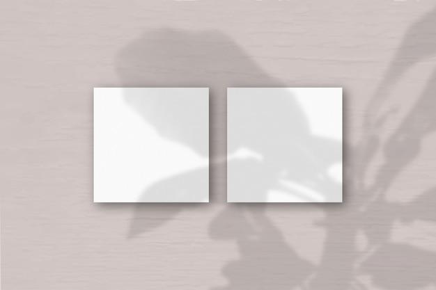 2 vierkante vellen wit gestructureerd papier op de roze grijze muur achtergrond. mockup-overlay met de plantschaduwen. natuurlijk licht werpt schaduwen van de boom van geluk. plat lag, bovenaanzicht.