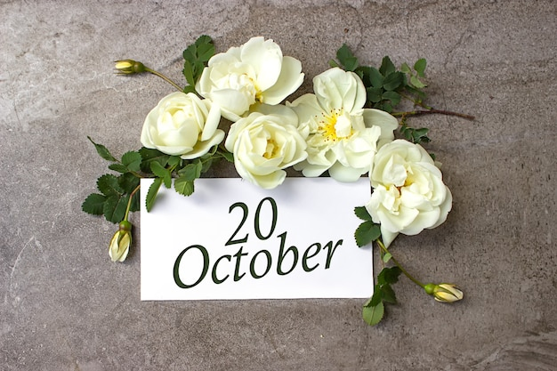 20 oktober. dag 20 van de maand, kalenderdatum. witte rozen grens op pastel grijze achtergrond met kalenderdatum. herfstmaand, dag van het jaarconcept.