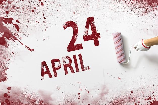 24 april. dag 24 van de maand, kalenderdatum. de hand houdt een roller met rode verf vast en schrijft een kalenderdatum op een witte achtergrond. lente maand, dag van het jaar concept.