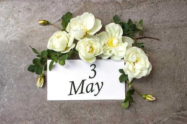 3 mei. dag 3 van de maand, kalenderdatum. witte rozen grens op pastel grijze achtergrond met kalenderdatum. lente maand, dag van het jaar concept.