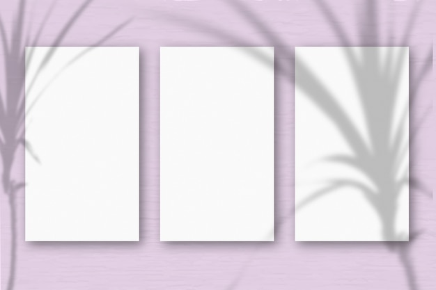 3 verticale vellen getextureerd wit papier op zachtroze groene tafelachtergrond. mockup met een overlay van plantschaduwen. natuurlijk licht werpt schaduwen van een tropische plant. horizontale oriëntatie.