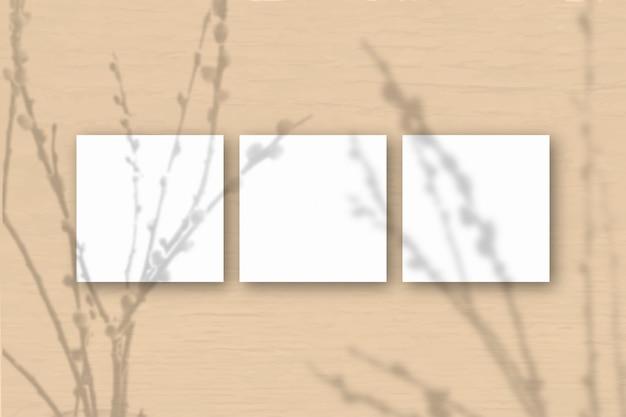 3 vierkante vellen wit getextureerd papier op een oranje muurachtergrond. mockup-overlay met de plantschaduwen. natuurlijk licht werpt schaduwen van wilgentakken. plat lag, bovenaanzicht. horizontale oriëntatie
