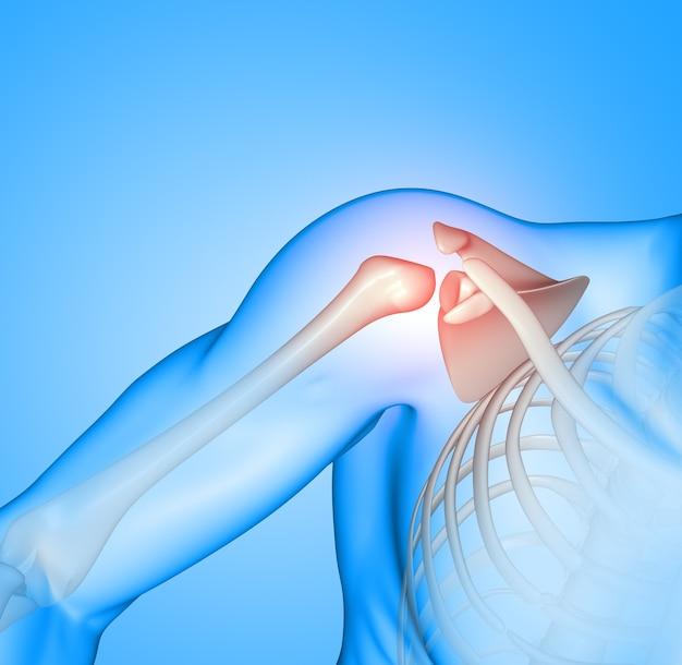 3d geef van een mannelijke medische figuur met gemarkeerde schoudercontactdoos terug