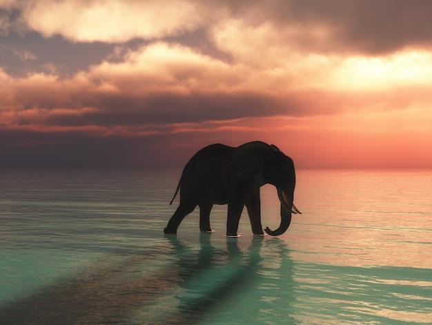 3d geef van een olifant terug die in de oceaan tegen een zonsonderganghemel loopt