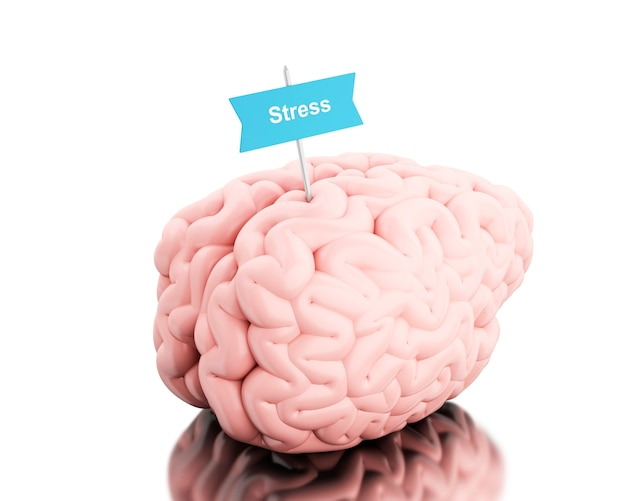 3d-hersenen met een bord en woord stress.