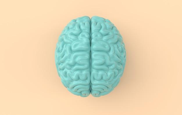 3d-hersenen rendering illustratie sjabloon achtergrond