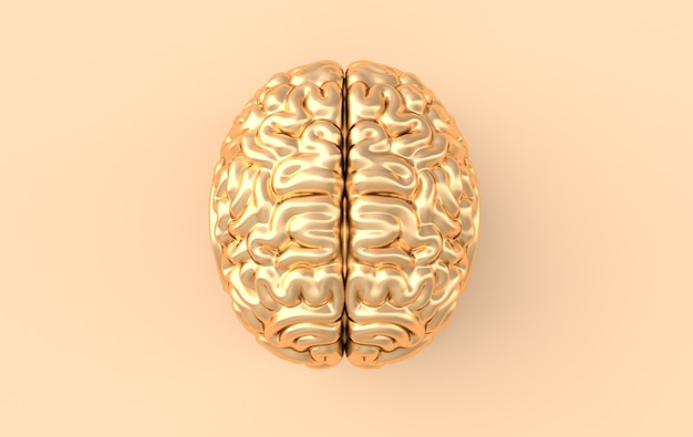 3d-hersenen rendering illustratie sjabloon.