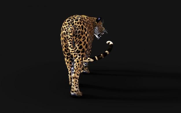 3d illustratie van geïsoleerde luipaard op zwarte achtergrond