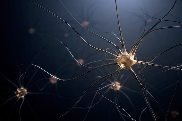 3d illustratie van menselijke zenuwcellen