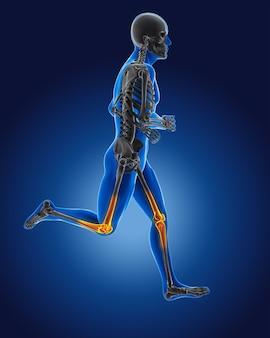 3d lopende medische man met skelet knieën gemarkeerd