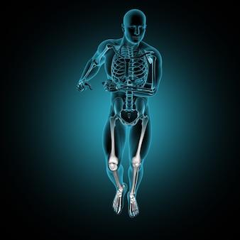 3d mannelijk medisch cijfer in het runnen stelt het tonen van vooraanzicht met benadrukte beenbotten