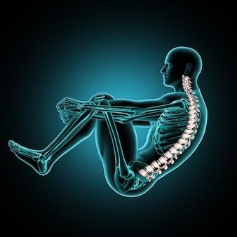 3d mannelijke medische figuur in crunch-positie met wervelkolom gemarkeerd