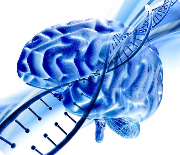 3d medische achtergrond met dna-streng en menselijk brein
