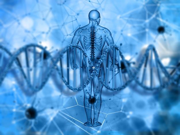 3d medische achtergrond met mannelijke figuur en bundel van dna