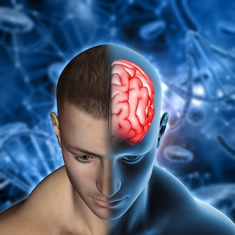3d medische achtergrond met mannelijke figuur met hersenen gemarkeerd
