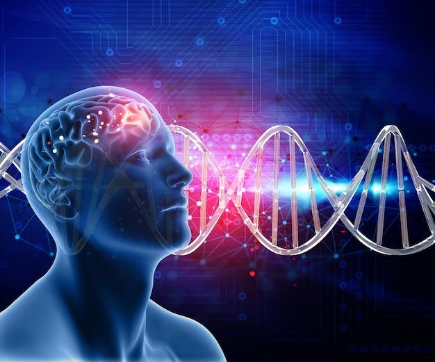 3d medische achtergrond met mannelijke kop en hersenen op dna strengen