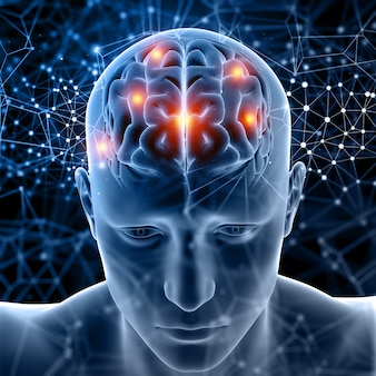 3d medische figuur met hersenen gemarkeerd