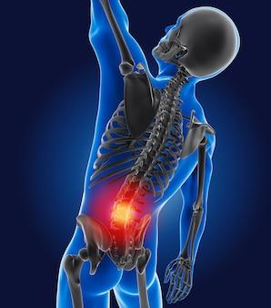 3d-medische man met skelet