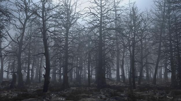 3d render animatie van vliegen door een eng bos