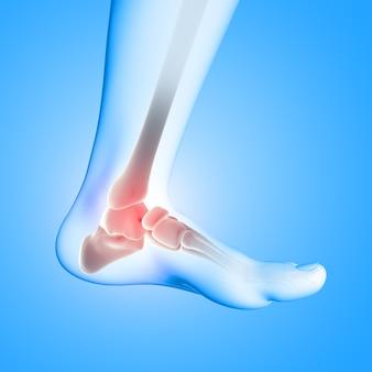 3d render van een medisch beeld van close-up van enkelbeen in voet