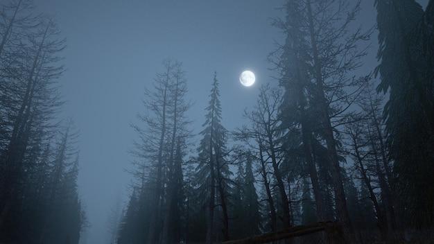 3d render van mystiek bos 's nachts in de mist met maan aan de hemel