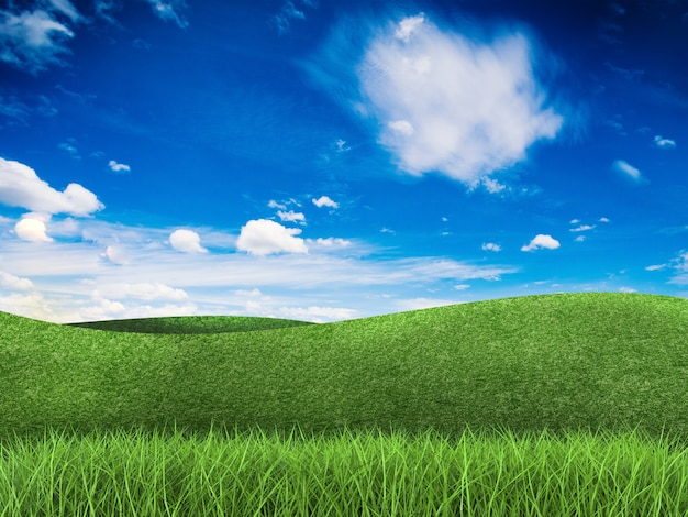 3d-rendering groen veld en blauwe lucht
