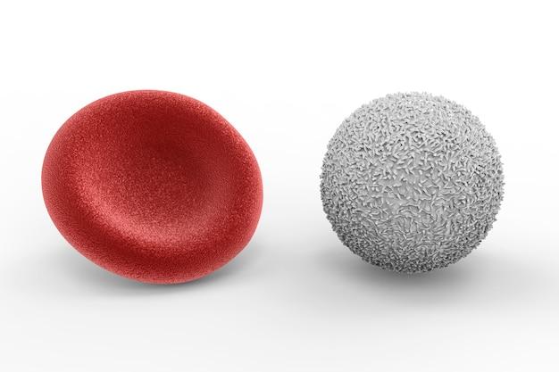 3d-rendering witte bloedcel met rode bloedcel op witte achtergrond