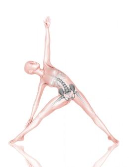 3d vrouwelijke medische figuur met skelet in yoga pose
