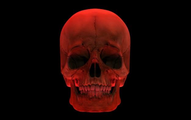 3d-weergave rood menselijk hoofdschedelbeen dat op zwarte achtergrond wordt geïsoleerd. horror halloween concept.