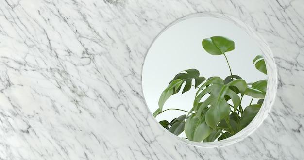 3d-weergave van marmeren muur en monstera plant.