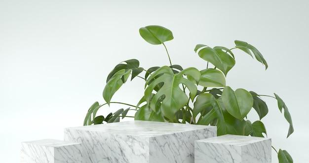 3d-weergave van marmeren podium en monstera plant.