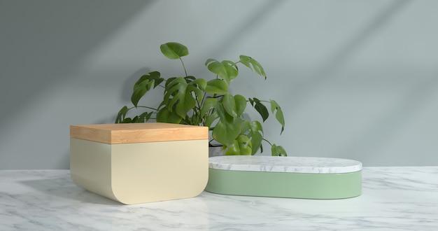 3d-weergave van marmeren podium en plant.