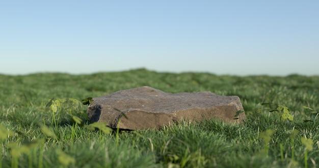 3d-weergave van steen en gras