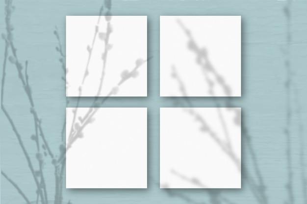 4 vierkante vellen wit gestructureerd papier op de blauwgroene muurachtergrond. mockup-overlay met de plantschaduwen. natuurlijk licht werpt schaduwen van wilgentakken. plat lag, bovenaanzicht. horizontaal
