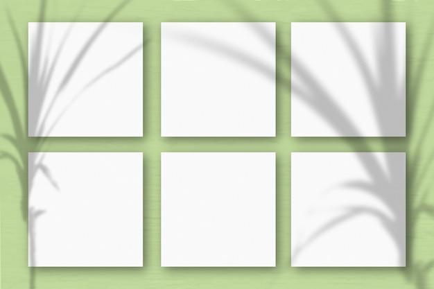 6 vierkante vellen wit gestructureerd papier op lichtgroene muurachtergrond. mockup-overlay met de plantschaduwen. natuurlijk licht werpt schaduwen van een tropische plant. plat lag, bovenaanzicht. horizontaal