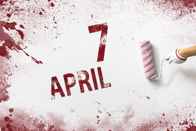 7 april. dag 7 van de maand, kalenderdatum. de hand houdt een roller met rode verf vast en schrijft een kalenderdatum op een witte achtergrond. lente maand, dag van het jaar concept.