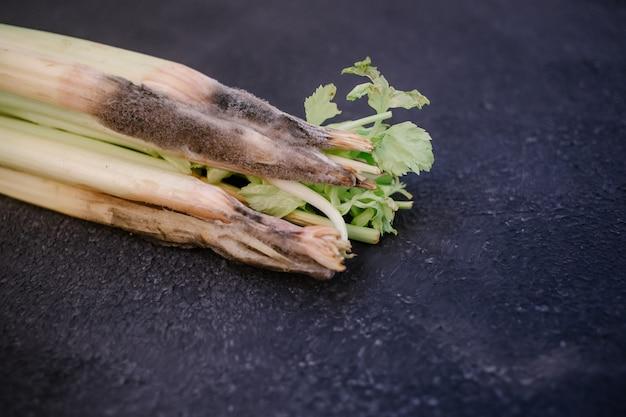 A close up van een ongezonde bedorven bedorven selderij op een donkere achtergrond. beschimmelde selderij.